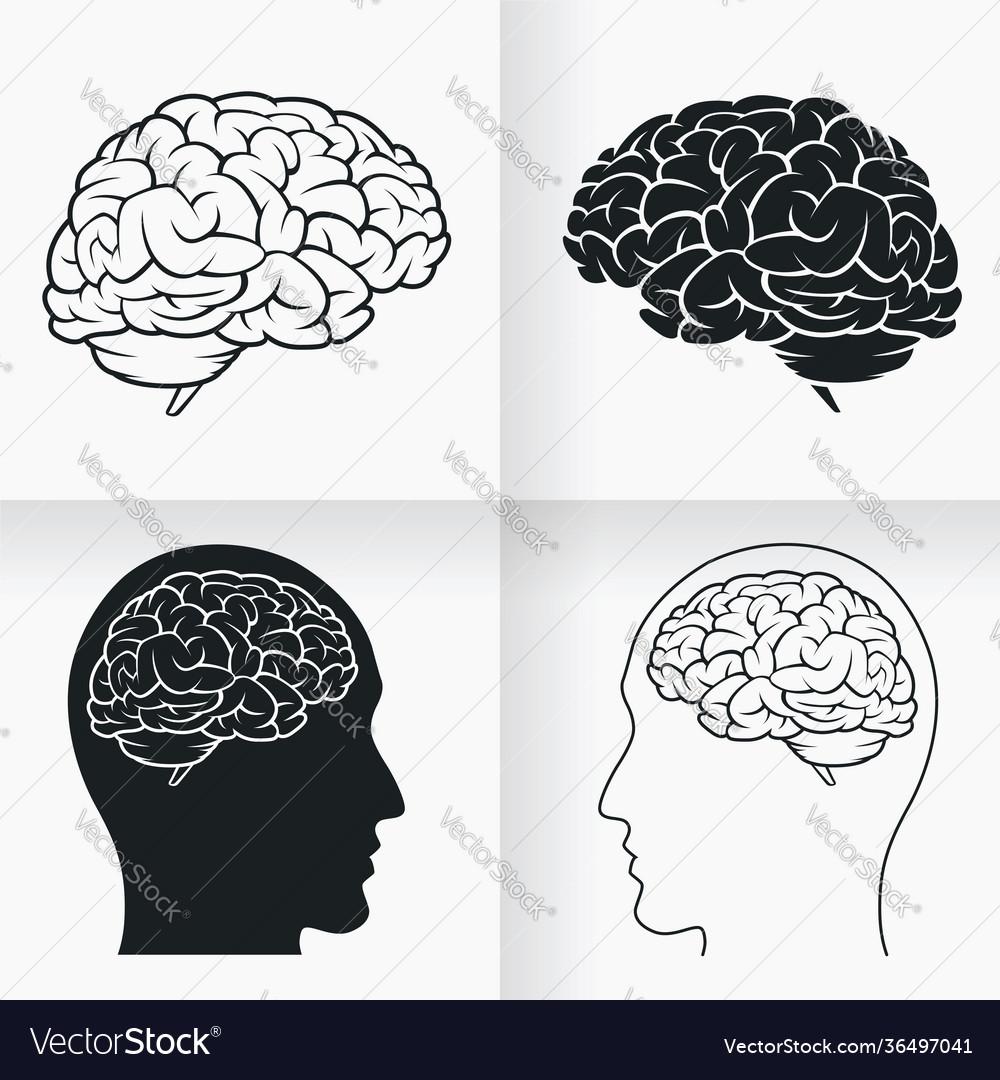 Silhouette simple brain inside human head cartoon