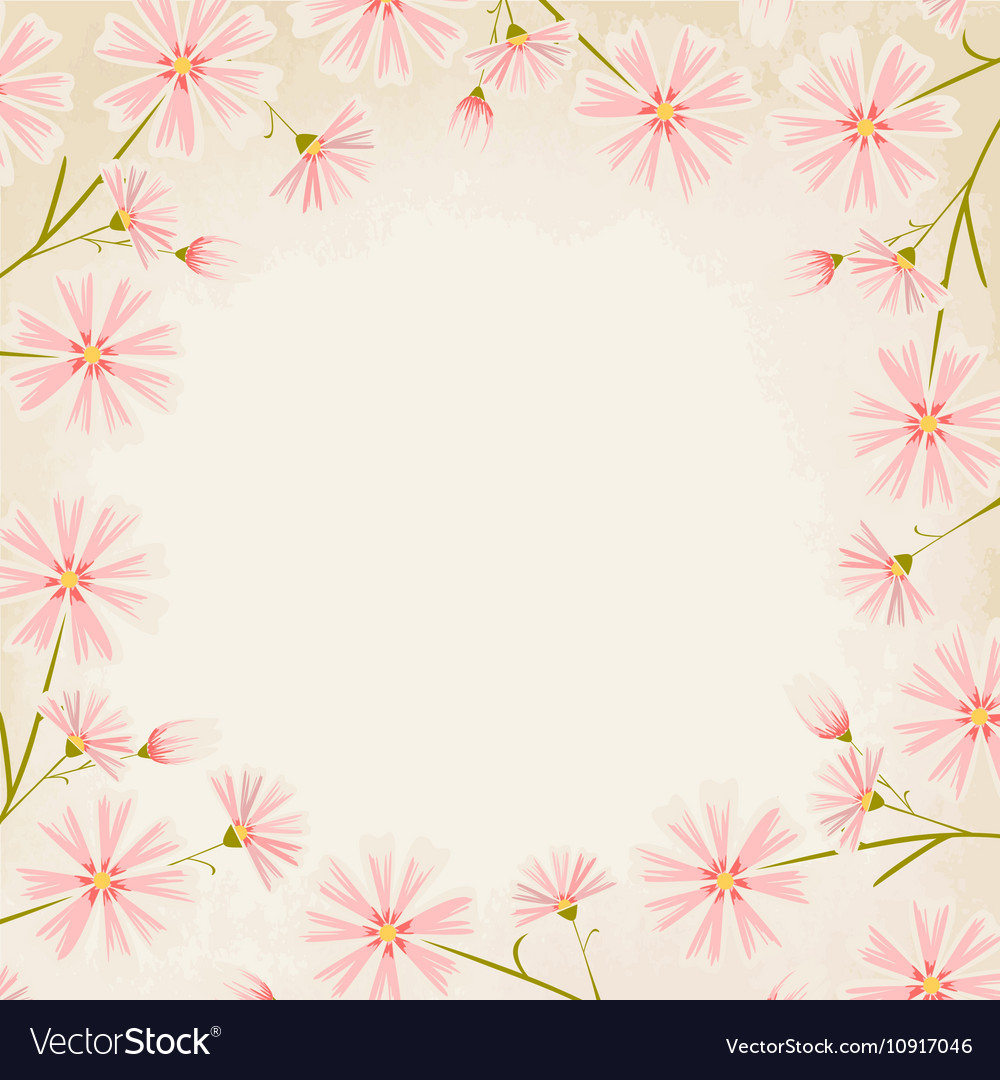 Pink Daisy Flowers Border Design Element Vector Image