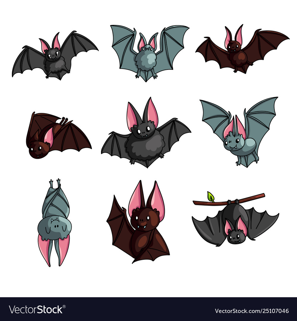 Set cute colorful bat in different poses or
