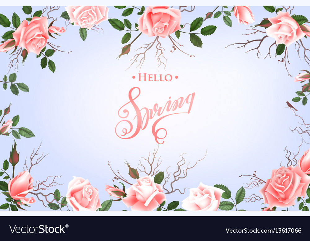 Hello spring background with roses hand drawn