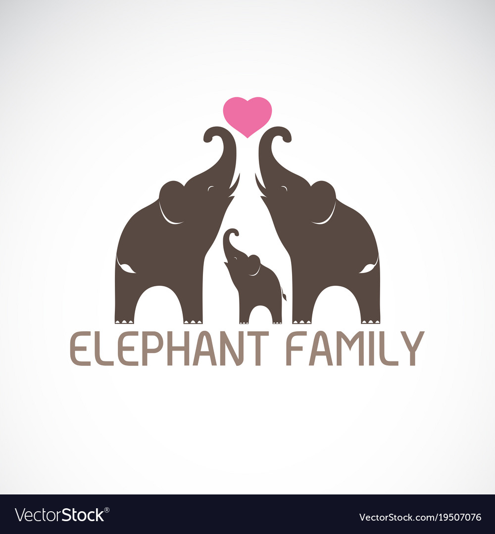 Family elephants and pink heart vector image