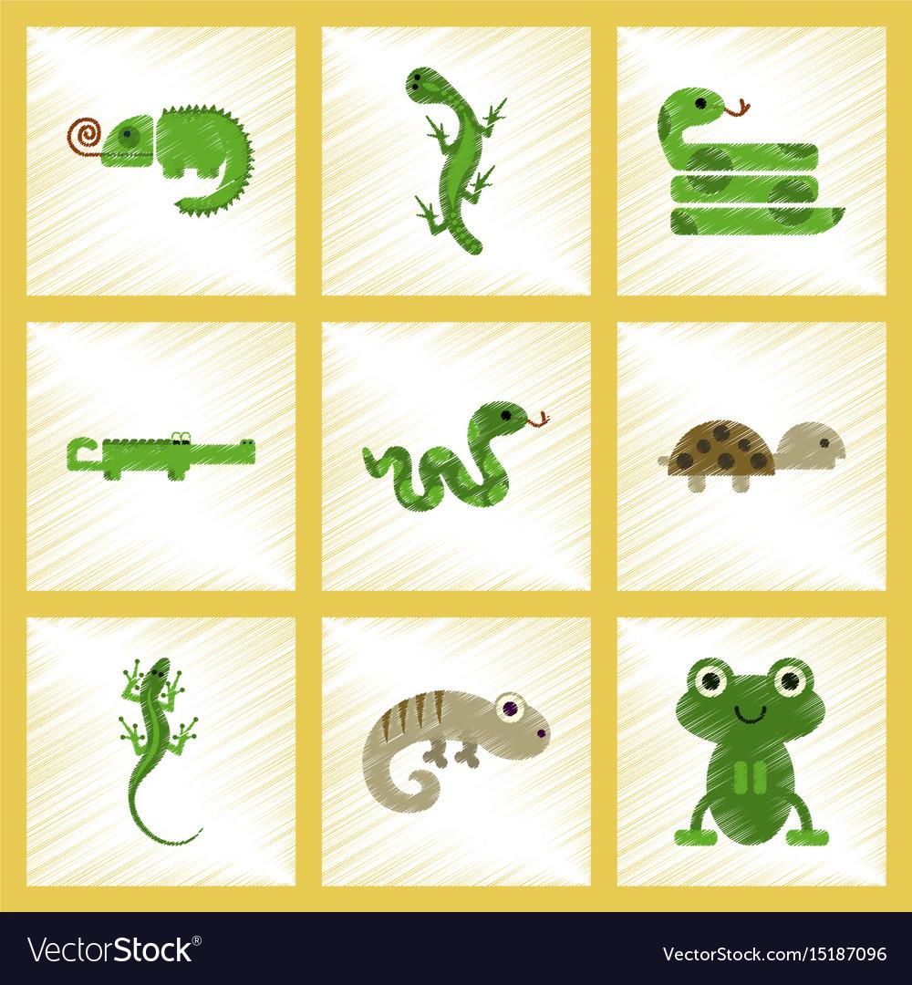 set of reptiles and amphibians wild crocodile