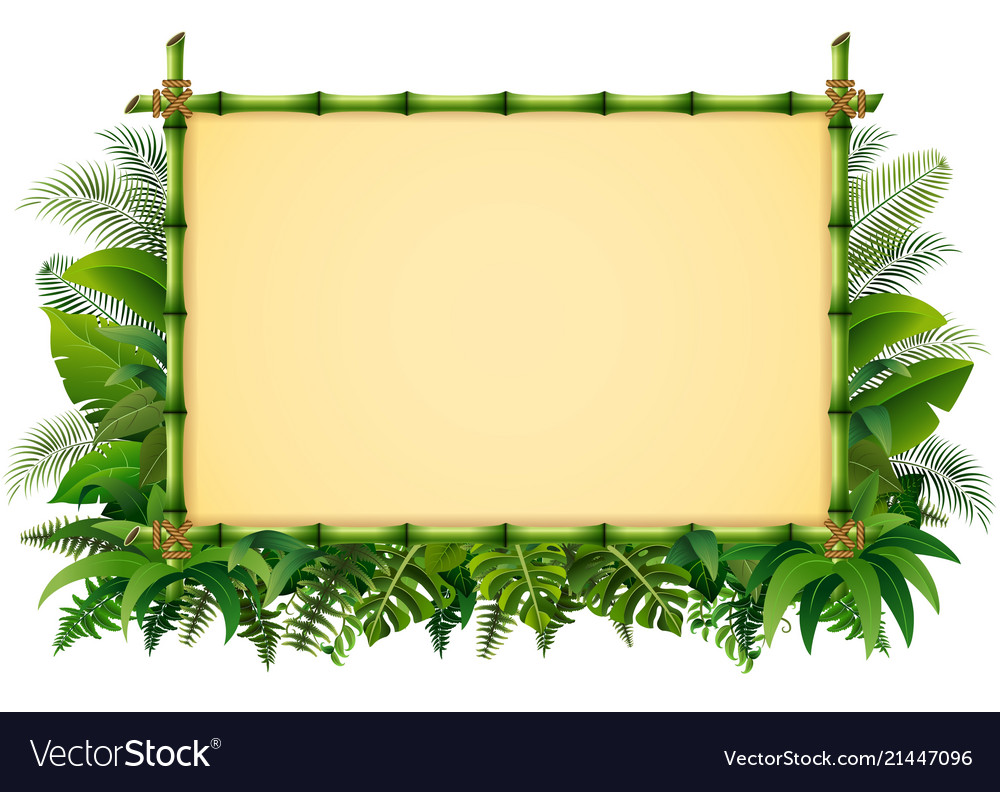 Tropical floral design background with green bambo