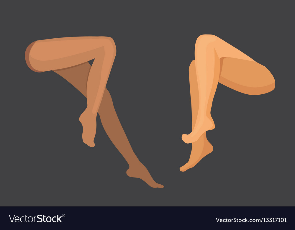 Woman legs set girl body beautiful and vector image