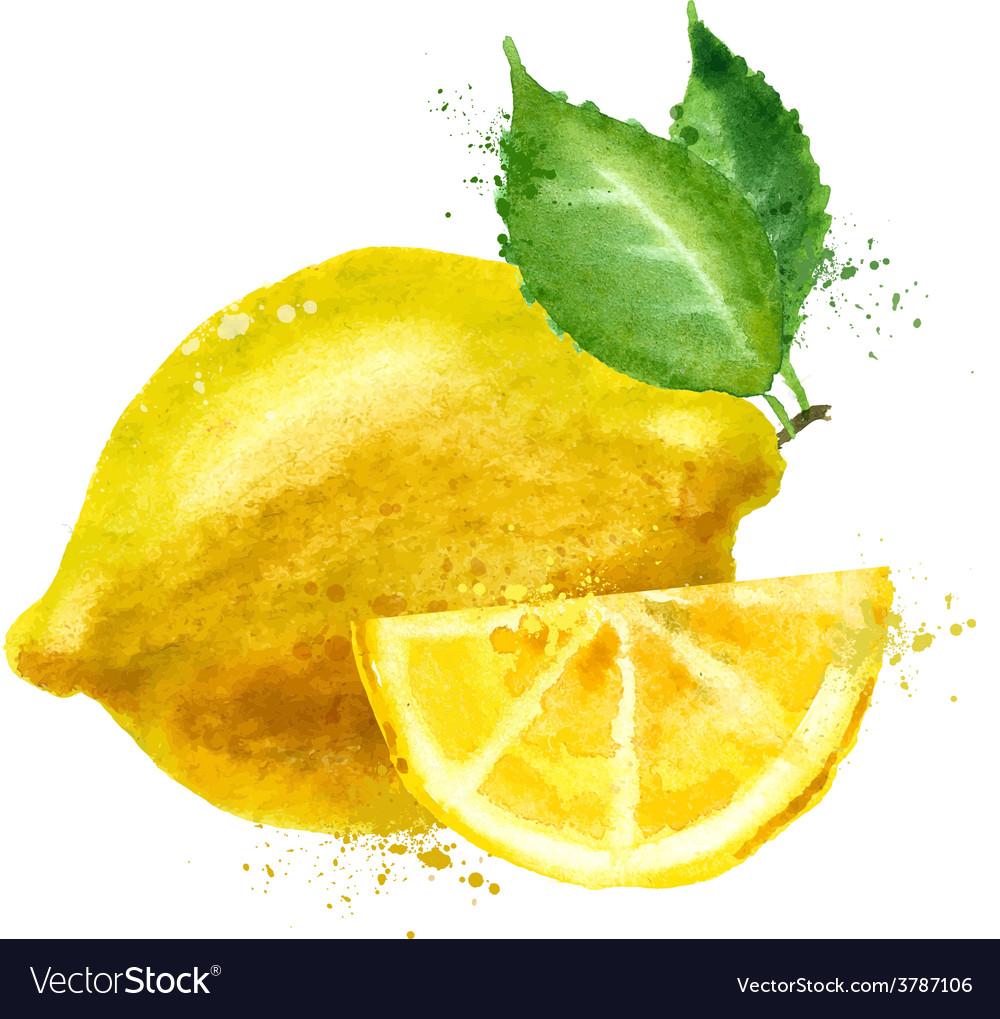 Lemon logo design template fruit or food