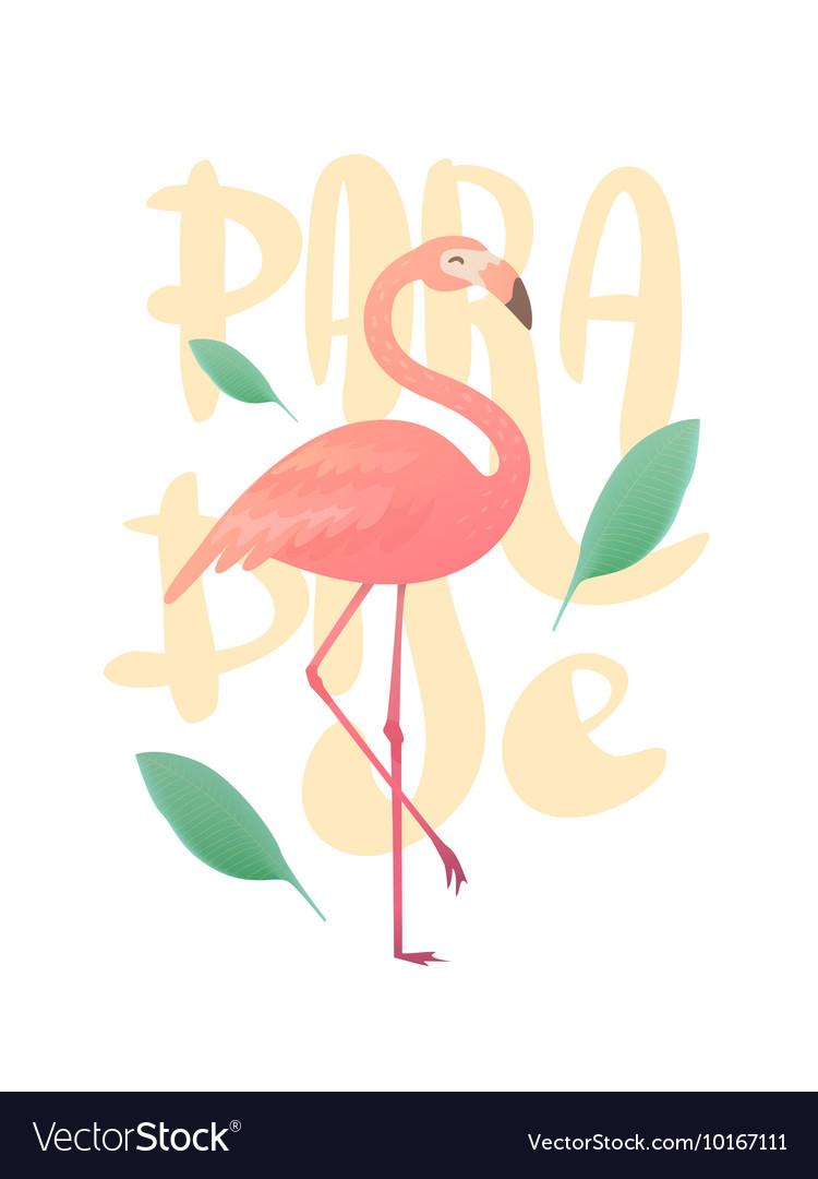 A pink flamingo vector image