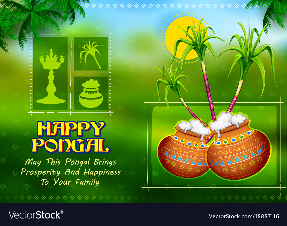 Happy pongal holiday harvest festival of tamil