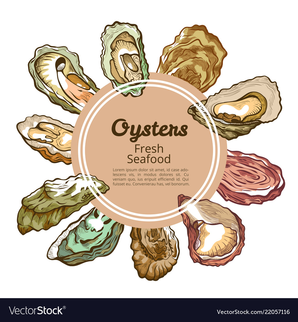 Oyster shell round banner with copy space