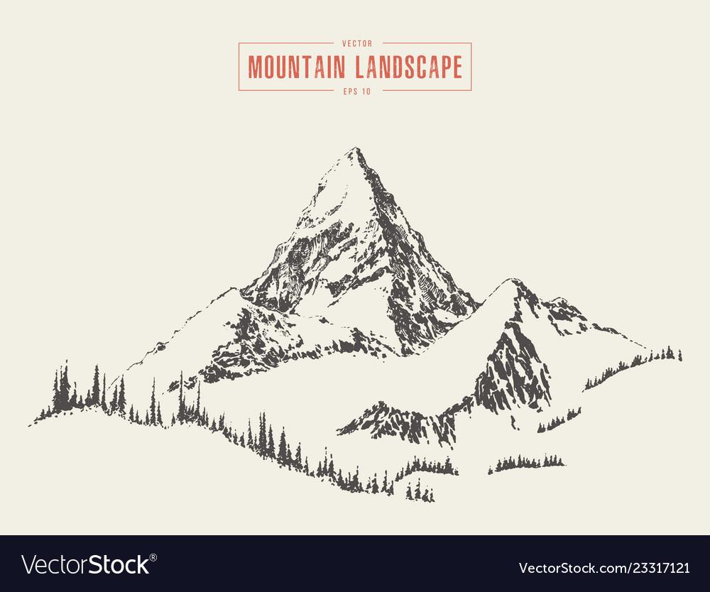 Mountain peak pine forest style hand drawn