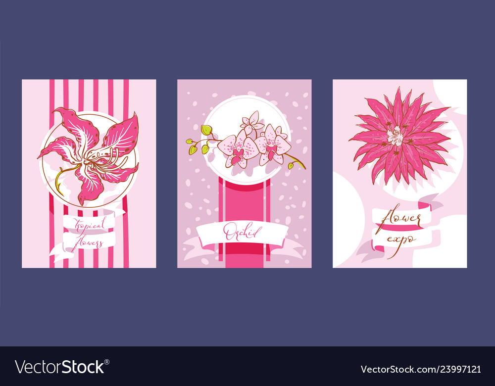 Tropical flowers set of cards summer design