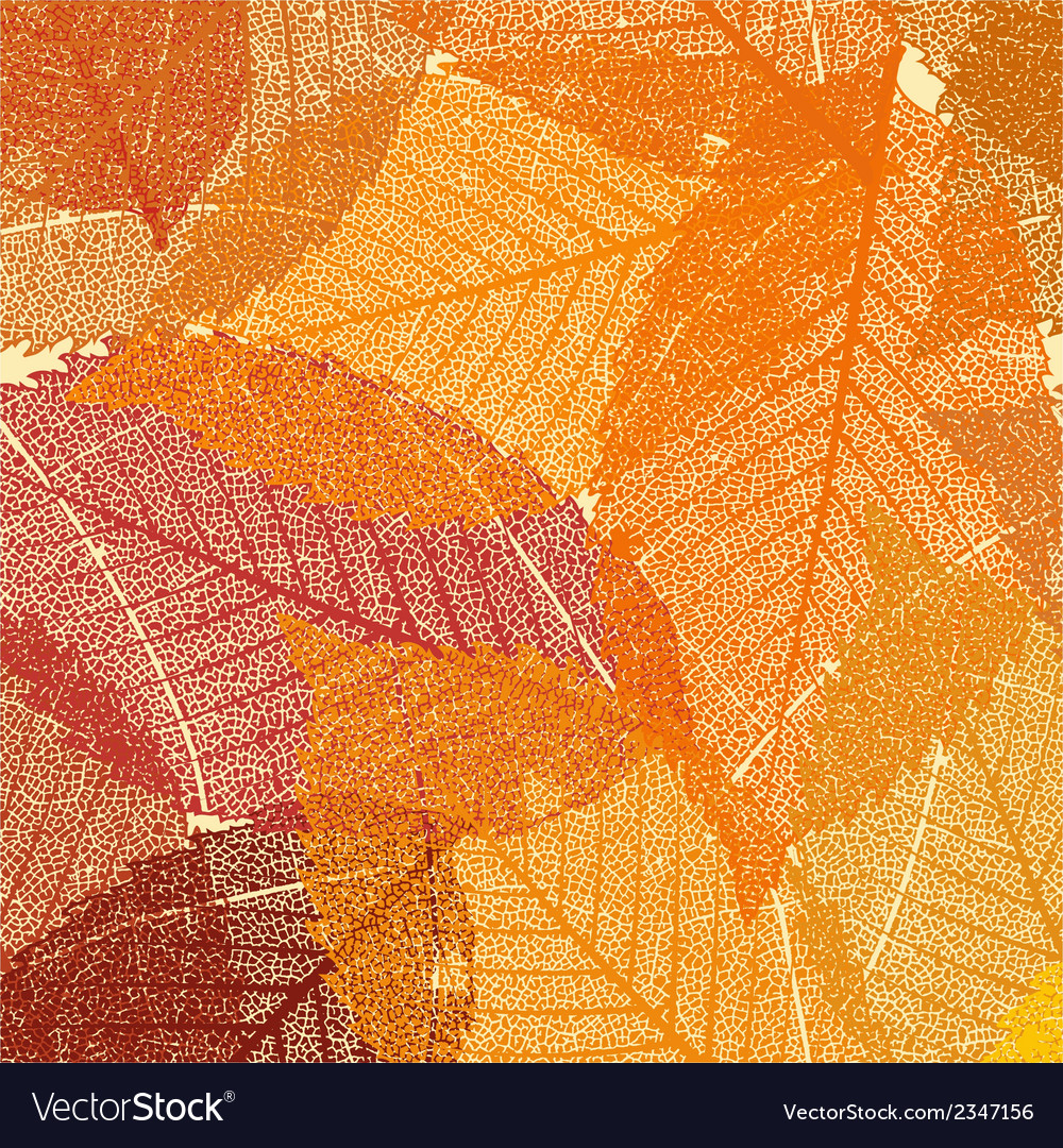 Dry Autumn Leaves Template Eps 8