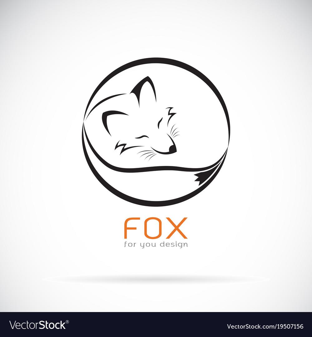 Fox design on white background wild animals vector image