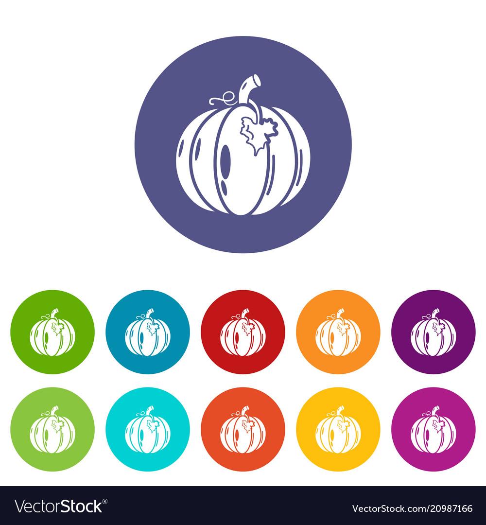 Pumpkin icons set color vector image