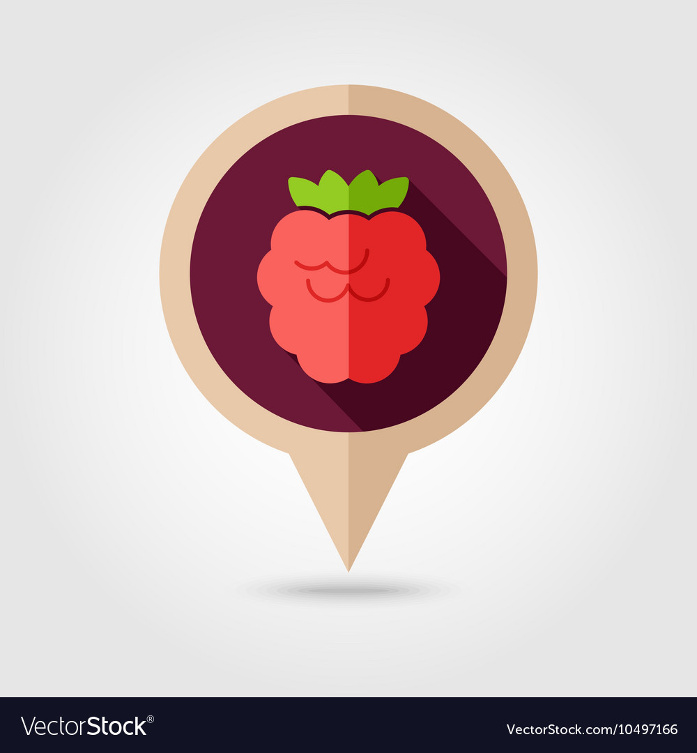 Raspberry flat pin map icon Berry fruit