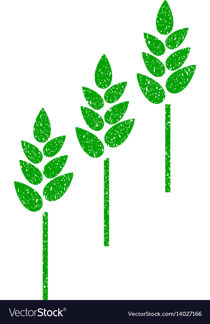 Wheat plants icon grunge watermark