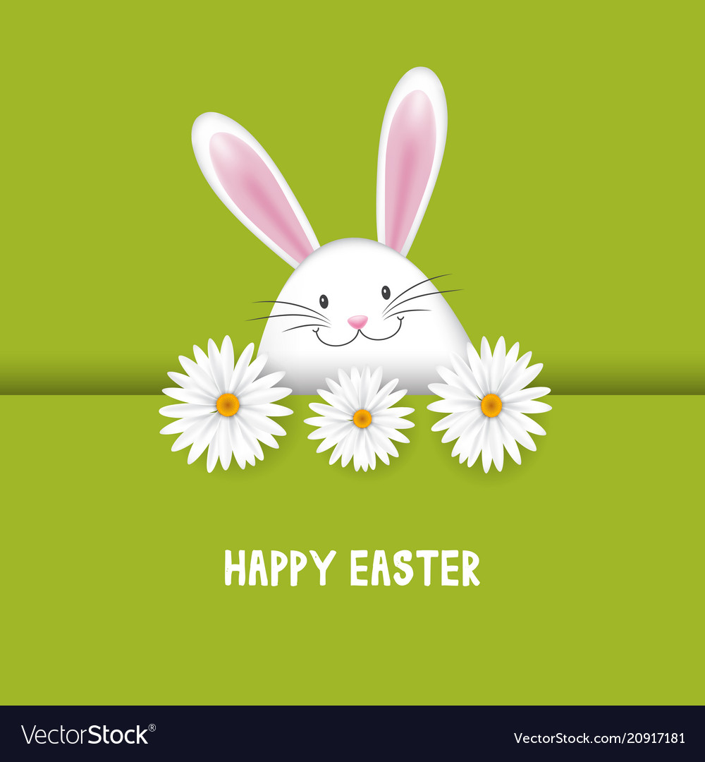 Easter background with bunny and daisies
