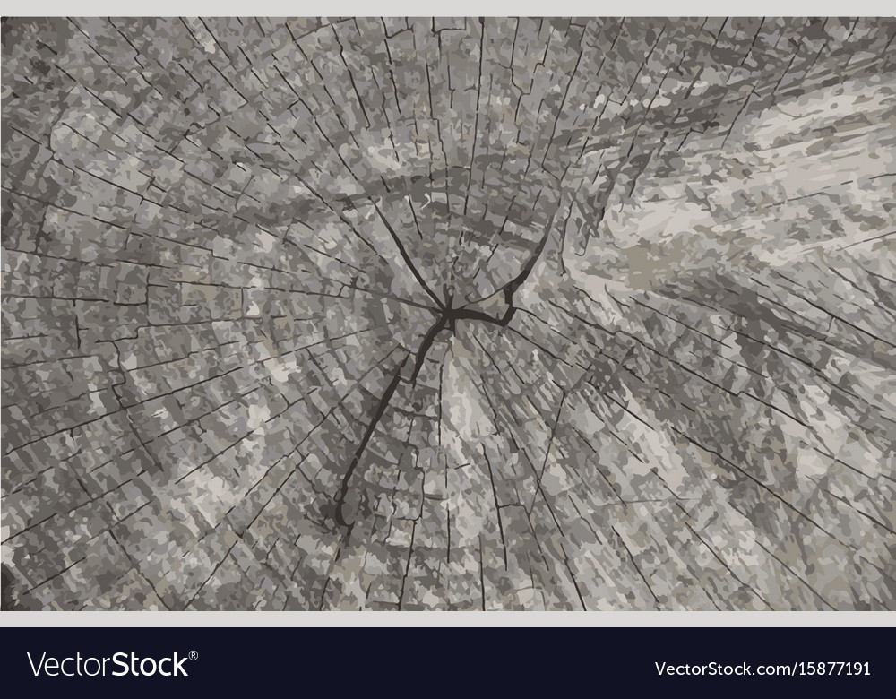 Grunge texture background natural wooden