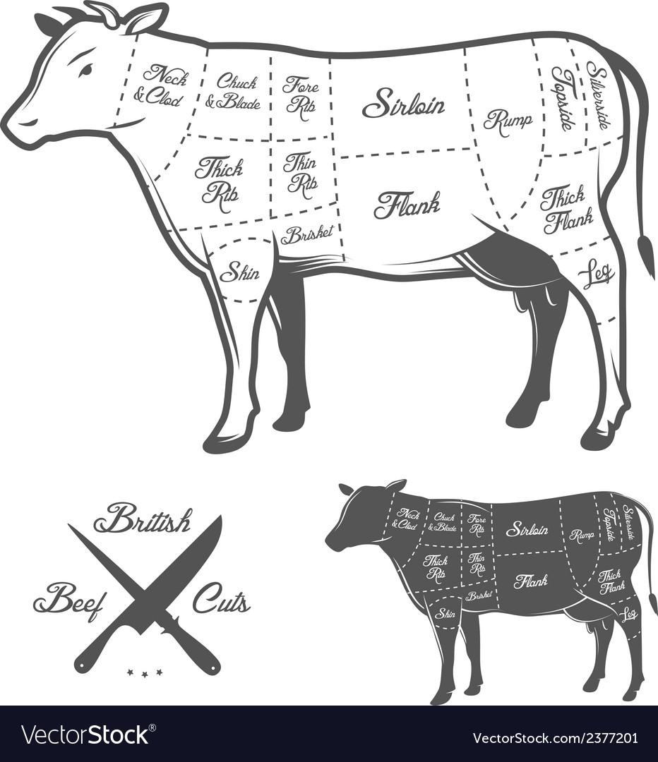 british butcher cuts of beef diagram vector 2377201 british butcher cuts of beef diagram royalty free vector