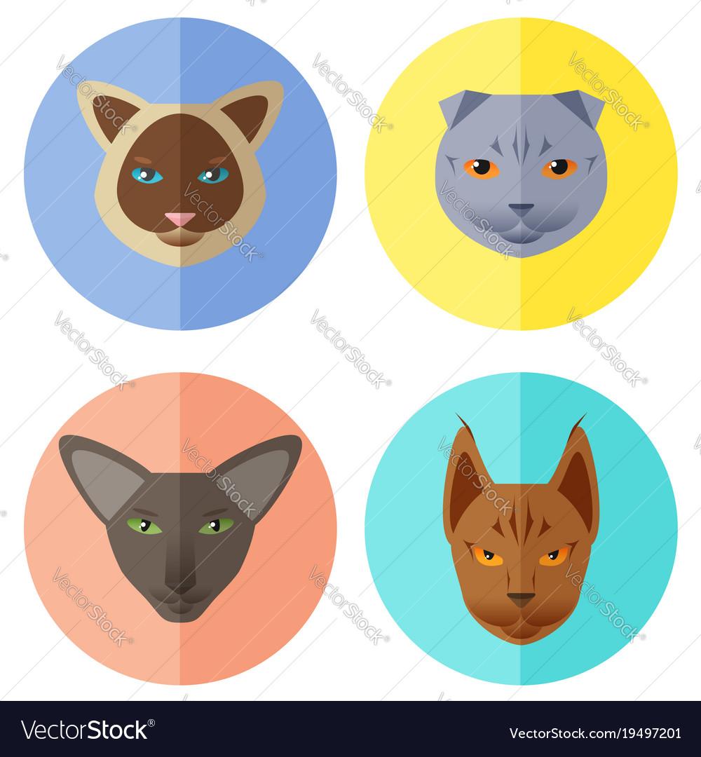 Cat breeds icons