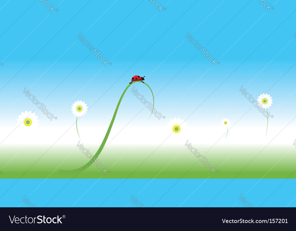 Ladybug spring background