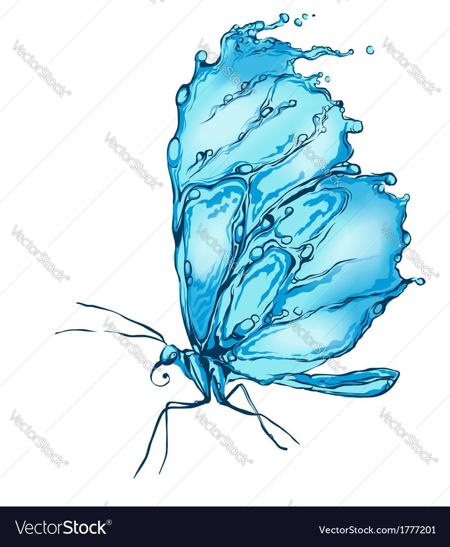 Water splash butterfly vector image