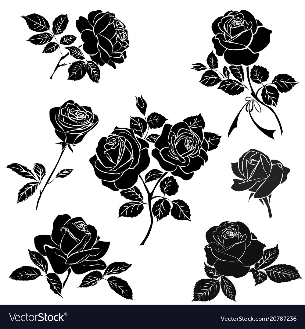 4a6e1070a Black silhouette of rose Royalty Free Vector Image