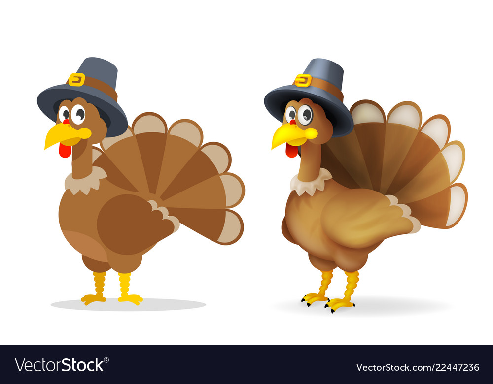 Turkey in pilgrim hat happy thanksgiving holiday