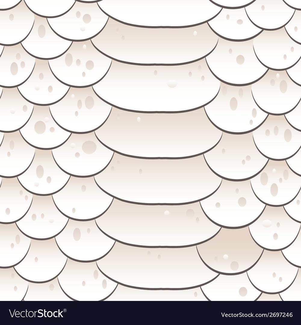 Snake skin texture Seamless pattern white vector image