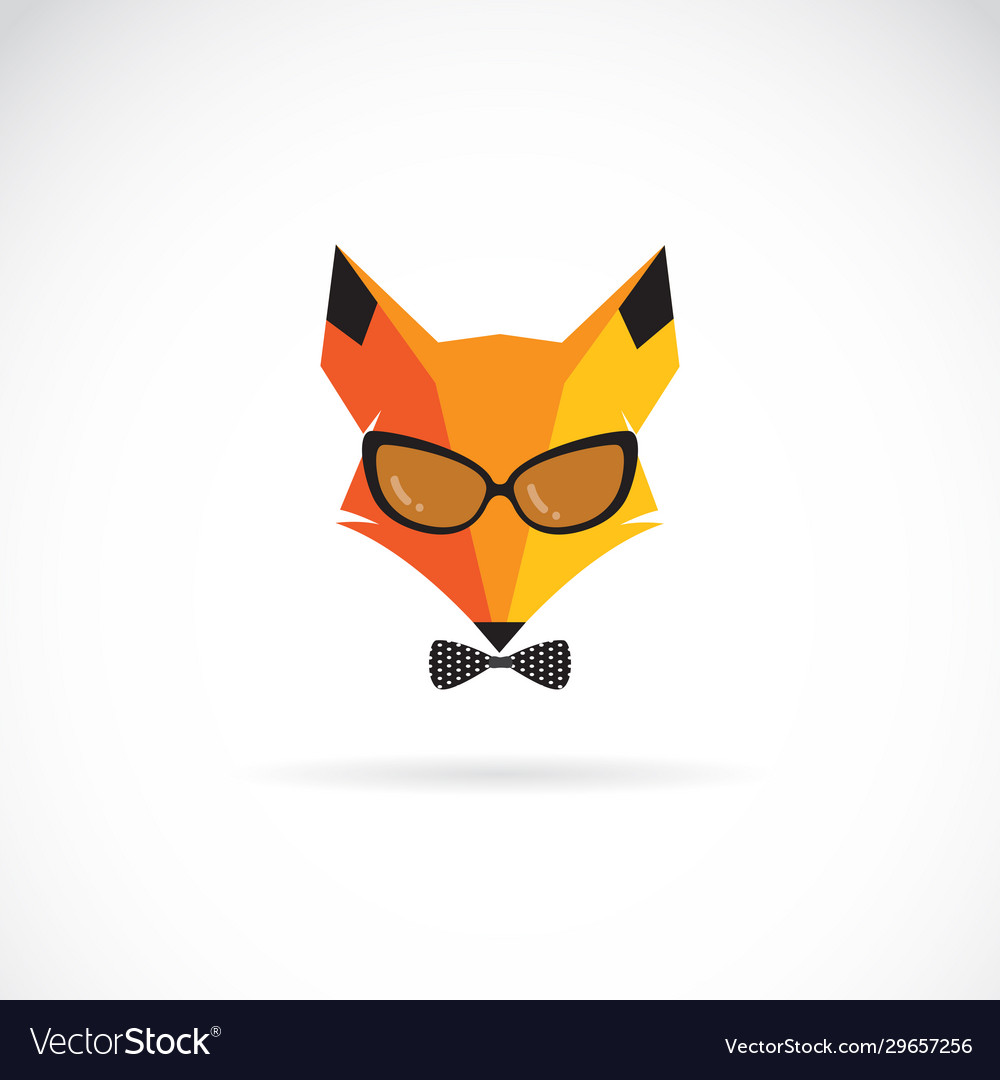 Fox wearing sunglasses on white background animal