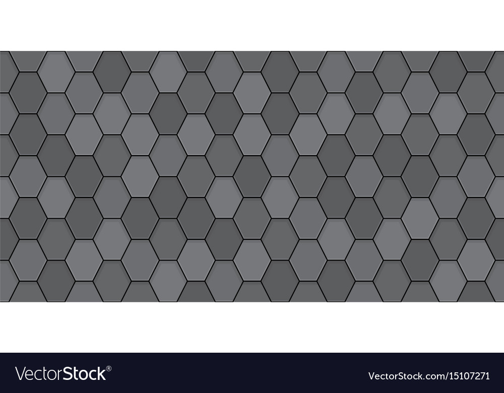 Black roof tiles vector image