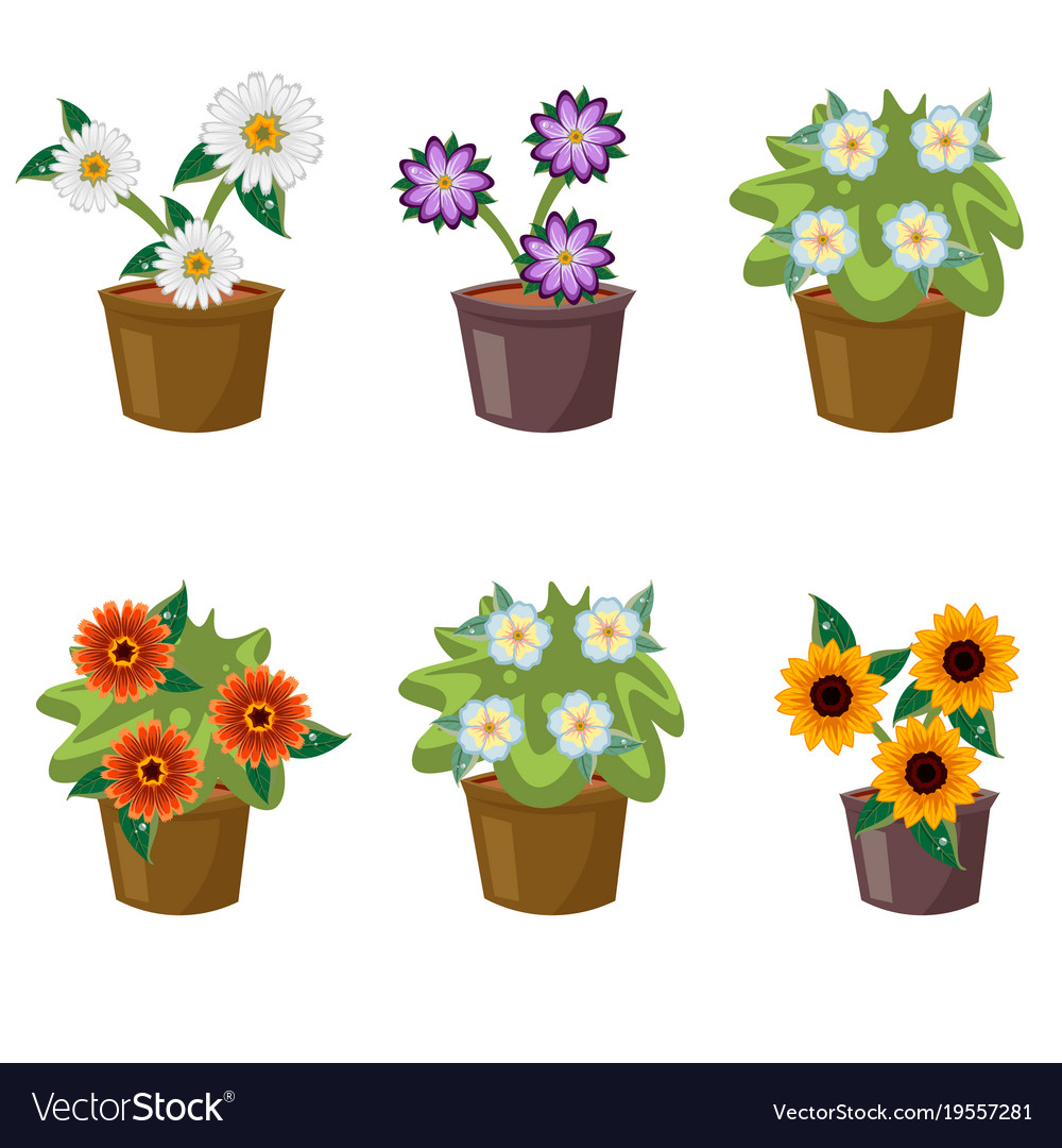 Set With Flat Flowers In Pots Royalty Free Vector Image