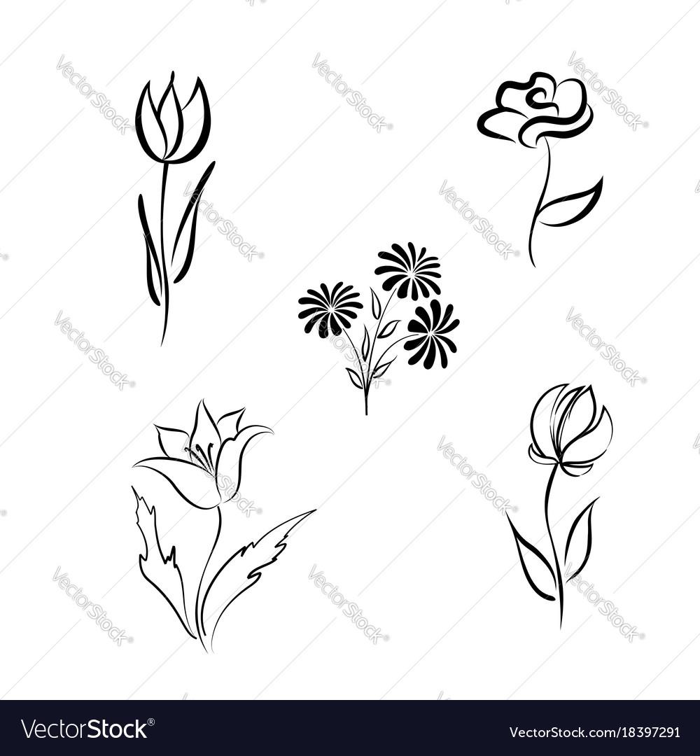 Flower set engraved floral design elements