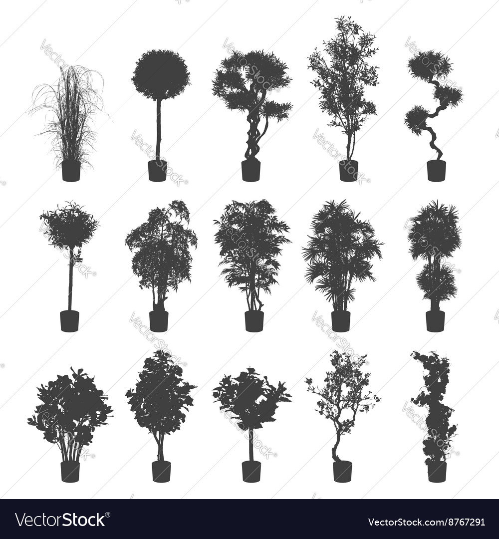 indoor home office plants royalty. house and office plants silhouette set vector image indoor home royalty