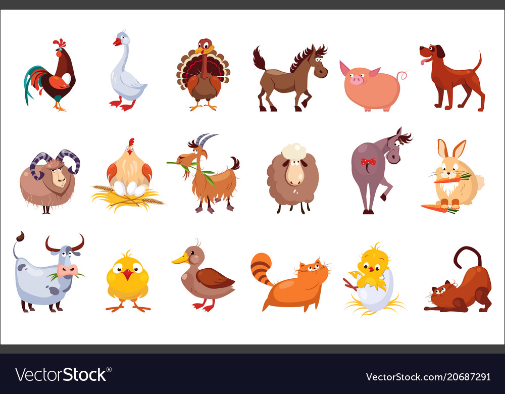 Set of farm animals livestock and poultry vector image