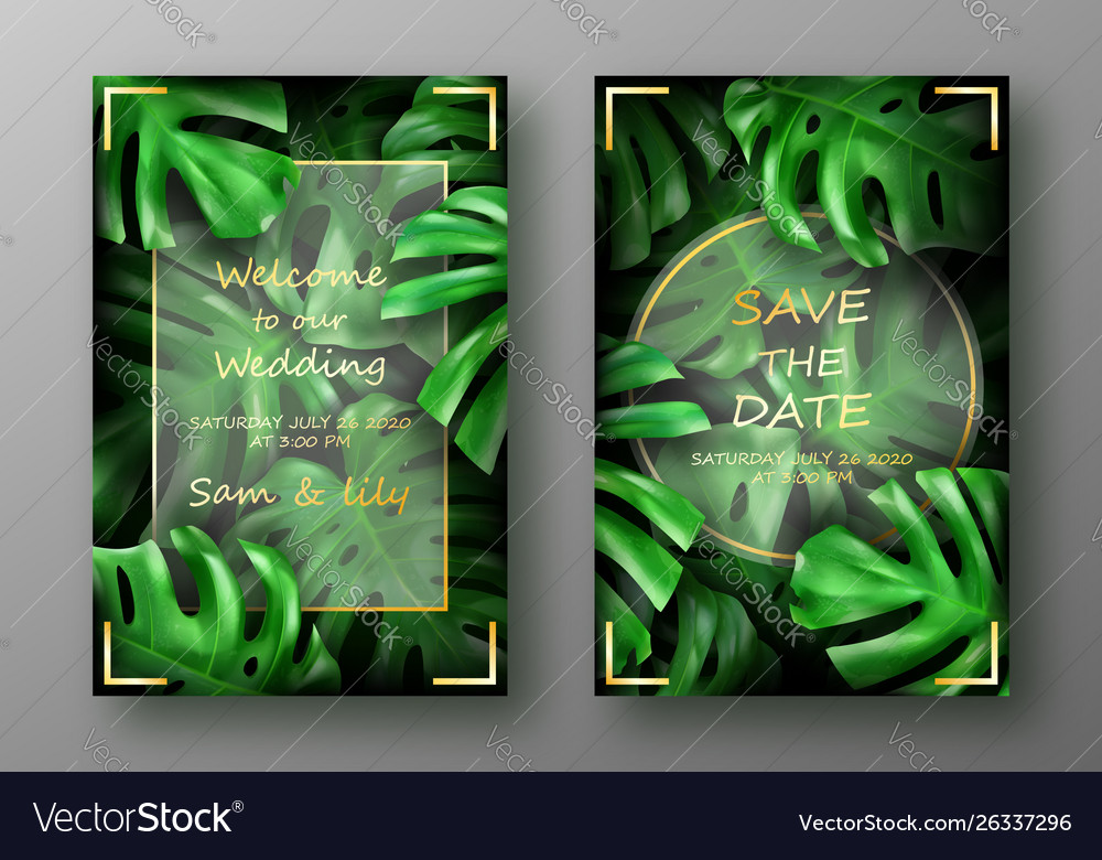 Tropical bright green monstera leaves