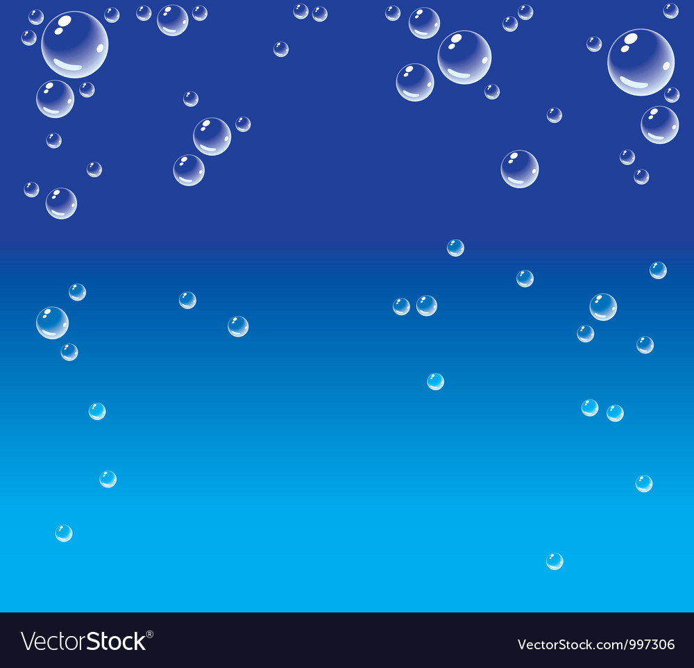 Bubbles in water vector image