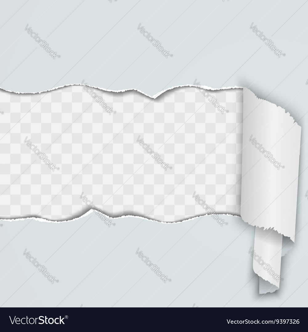 Light background with a torn strip of paper