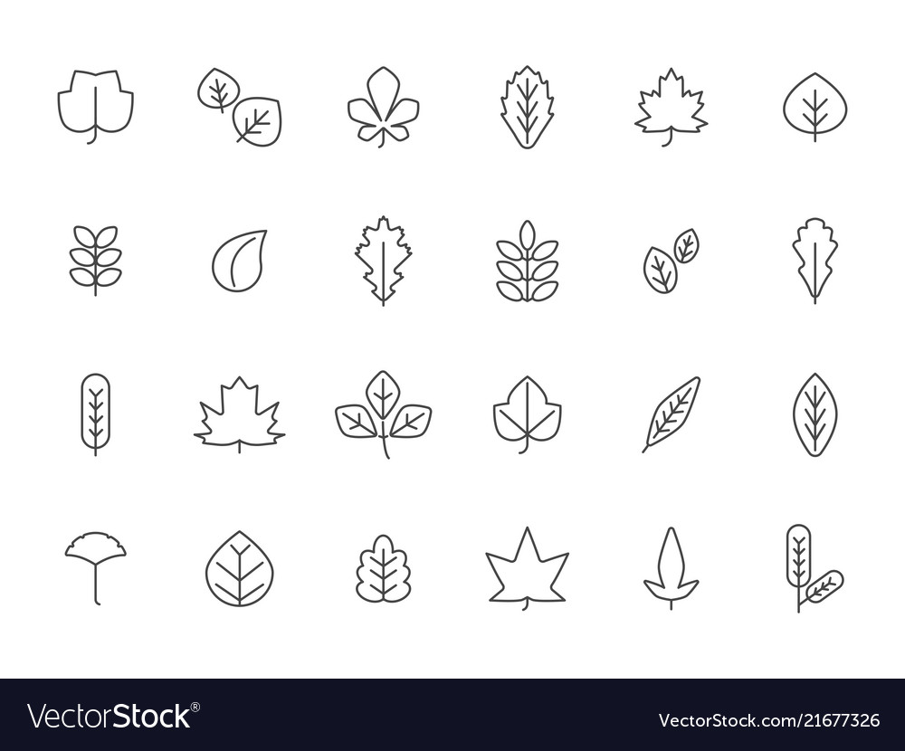 Linear autumn leaves leaf autumn line set