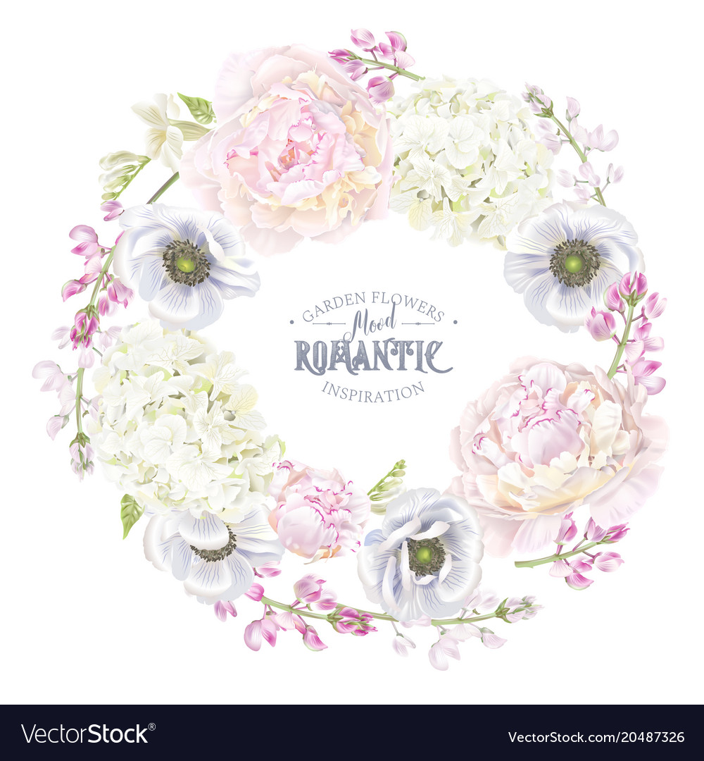 Peont anemone wreath vector image