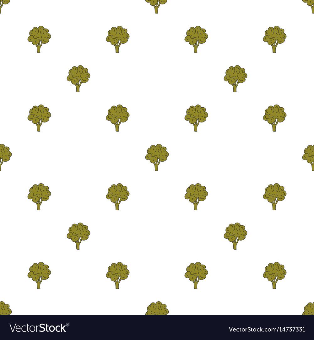 Cauliflower hand drawn on white background hand vector image