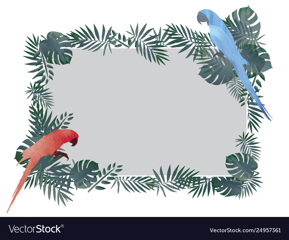 Red blue macaw bird and tropical green leaf
