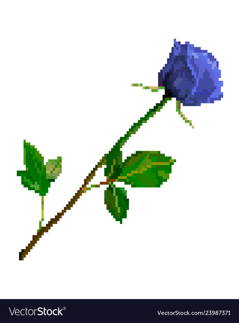 Pixel art rose flower isolated on white background