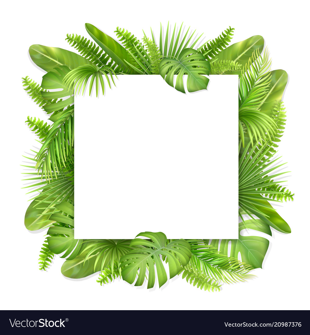 Square card with tropical leaves
