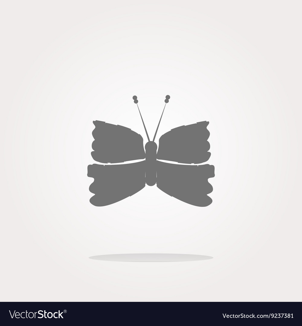Butterfly Icon on Internet Button isolated