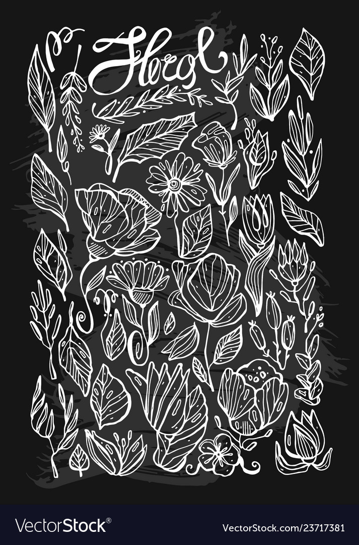 Hand drawn lined indoor floral plants line