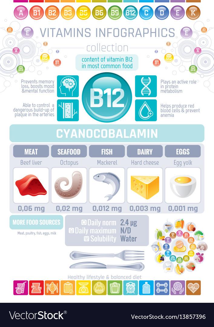 Cyanocobalamin vitamin b12 rich food icons