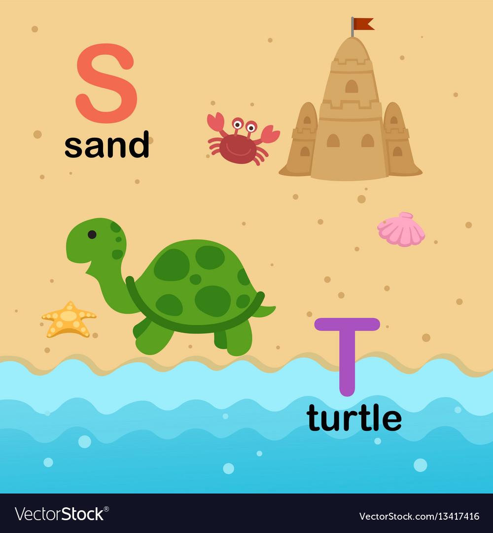 Alphabet letter s-sand t-turtle