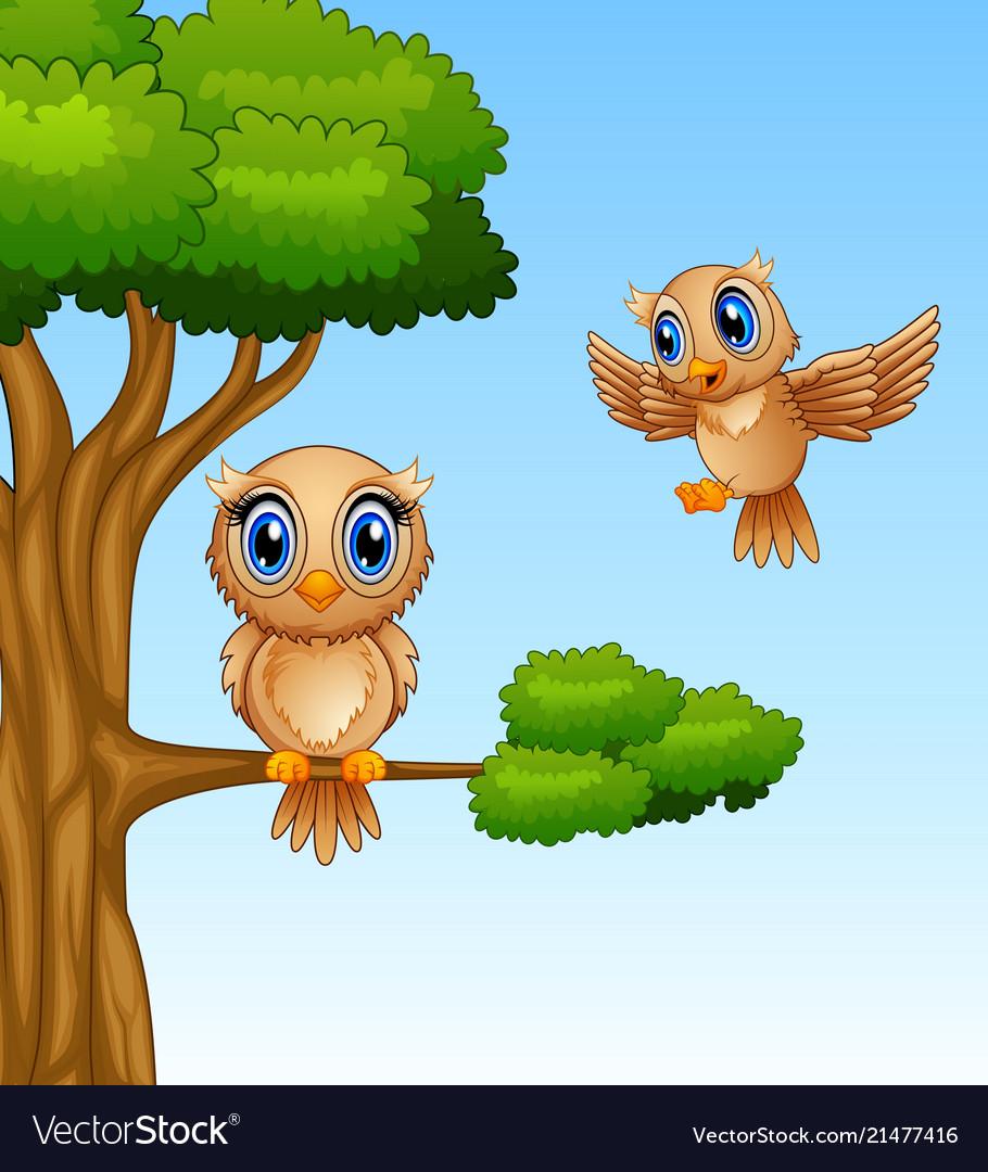 Cute owl cartoon on a tree branch