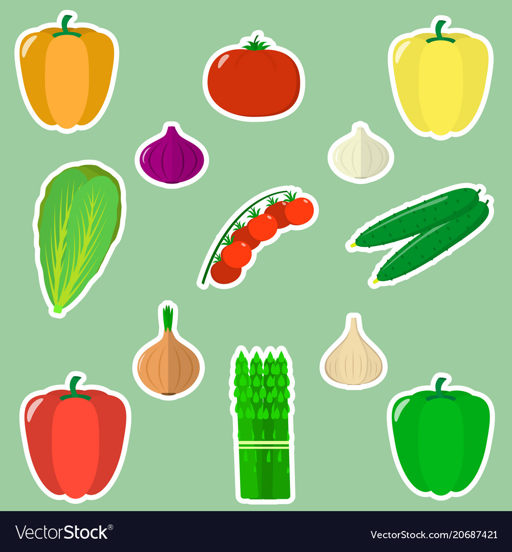 A set of fresh vegetables in a white stroke on a