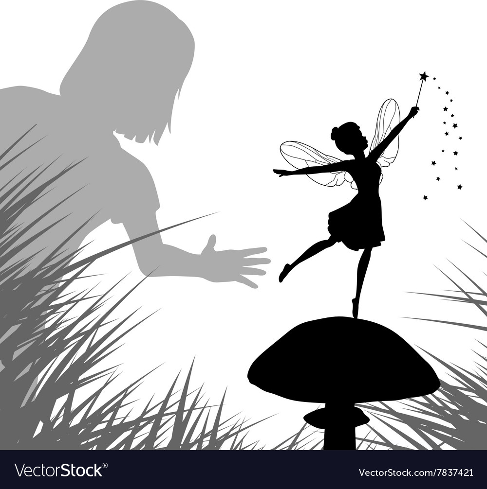 Fairy discovery vector image